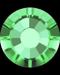 AURORA Plus, Fern Green
